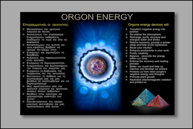 600x900px Orgon leaflet